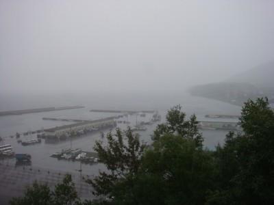 雨…残念。
