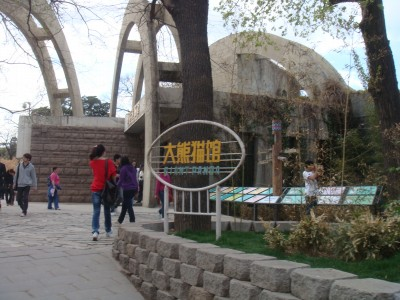 大熊猫でパンダです