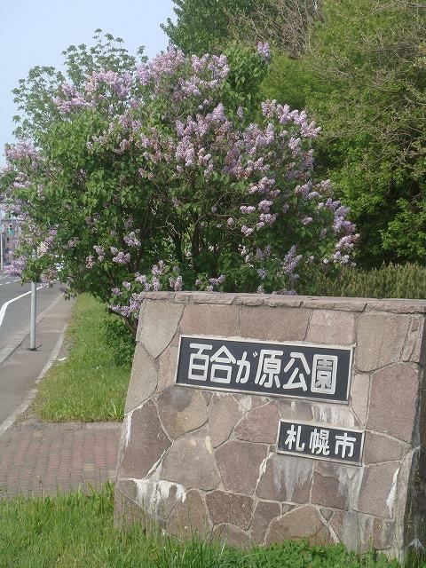 札幌市北区百合ヶ原公園
