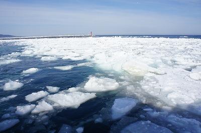 流氷帯到着