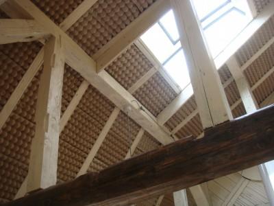 天井はたまごケース